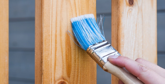 How to choose a paint brush